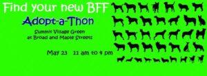 adopt a thon