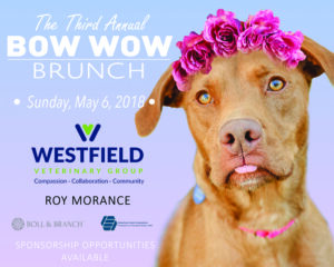 """""""Bow Wow"""" Brunch @ The Grand Summit Hotel 