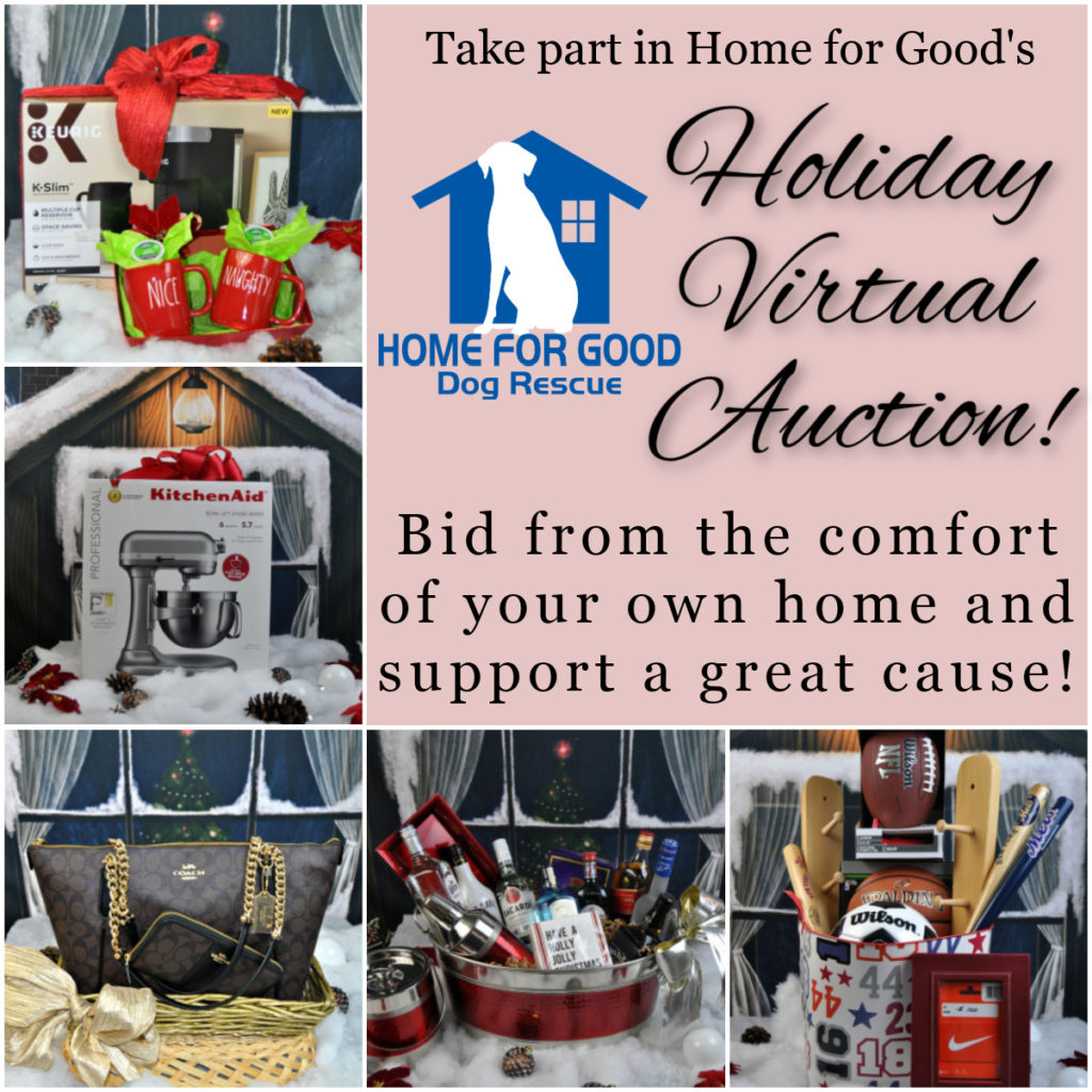 HFGDR Holiday Virtual Auction!