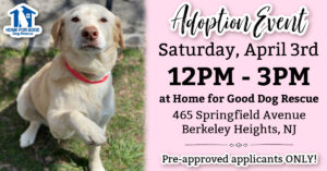 Adoption Event at HFGDR - Pre Approved Applicants ONLY @ Home for Good Dog Rescue