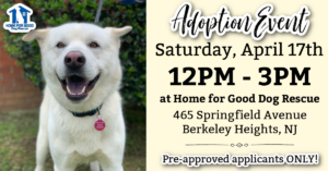Adoption Event at HFGDR - Approved Applicants Only! @ Home for Good Dog Rescue